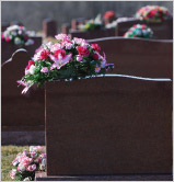 lot or plot interment option